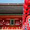 Japan-_DSC1676-Edit